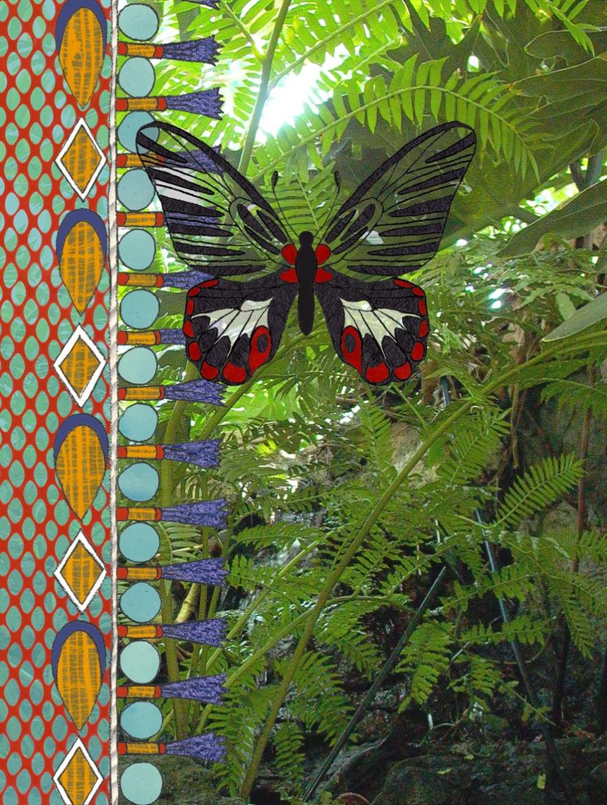 scarletswallowtail